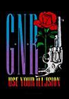 GUNS N ROSES (GUN) Flag