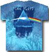 PINK FLOYD (PRISM PAINT) Tie-Dye